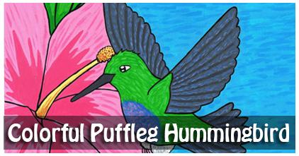 Colorful Puffleg