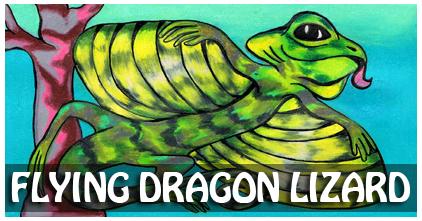 Flying Dragon Lizard